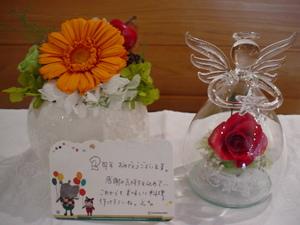 2011_0410_124534dsc00690
